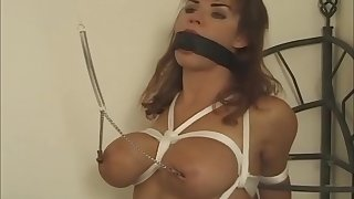 Homo Brazilian Webcam Taiwan Bdsm